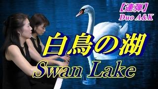 白鳥の湖 サムネイル写真100-53.jpg